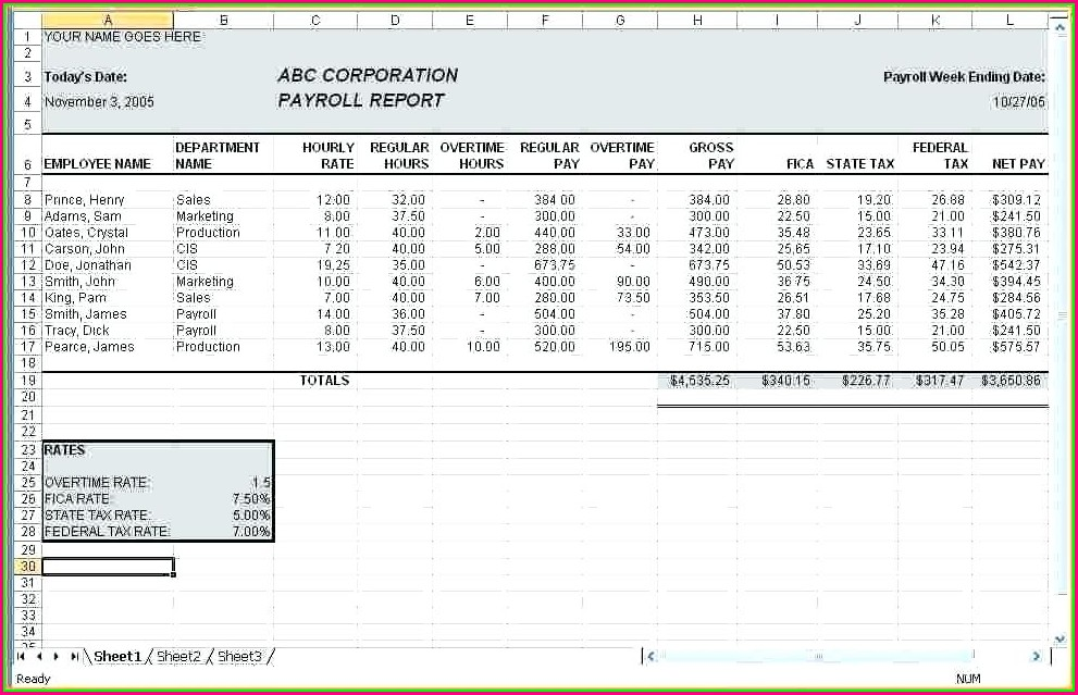 Payroll Summary Report Template Excel
