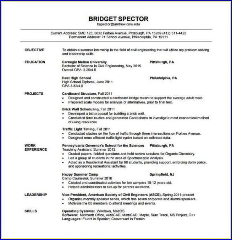 Pdf Resume For Fresher Civil Engineer