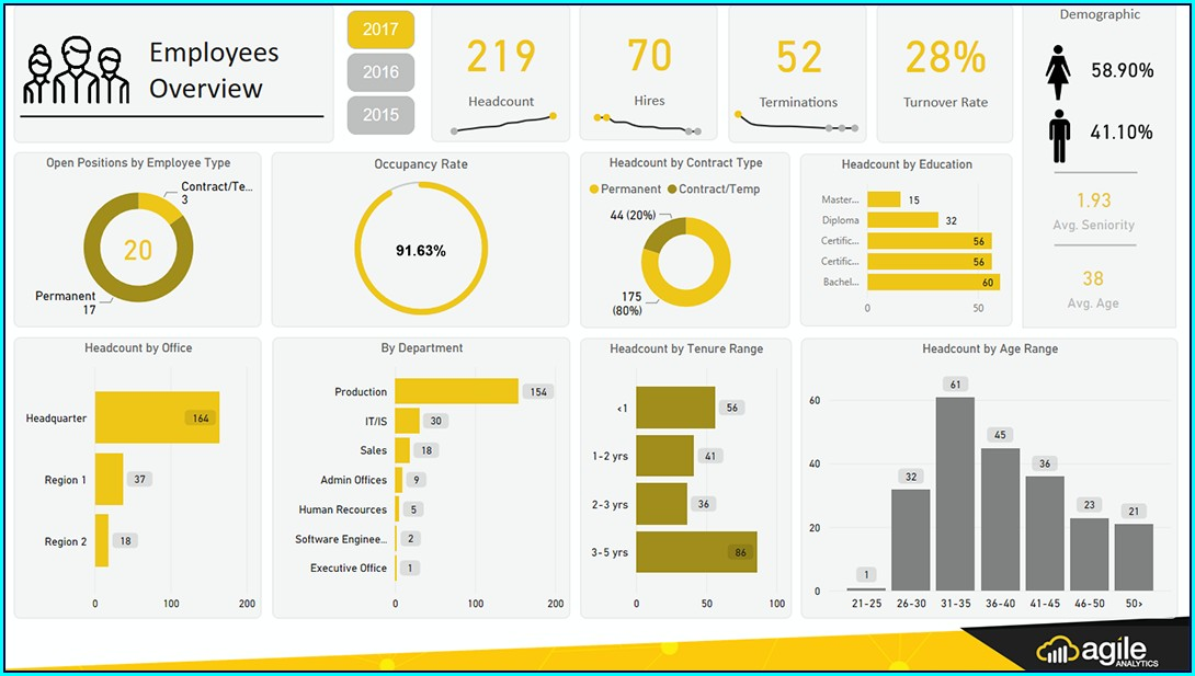 Power Bi Hr Dashboard Templates