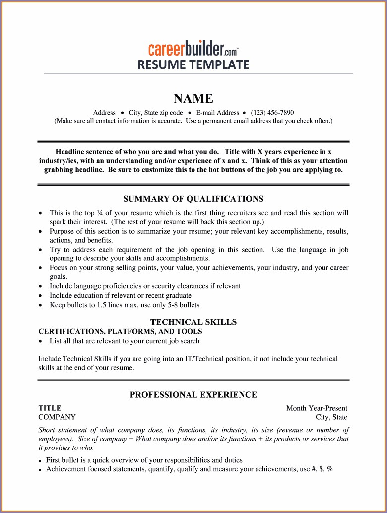 Printable Fill In The Blank Resume Pdf