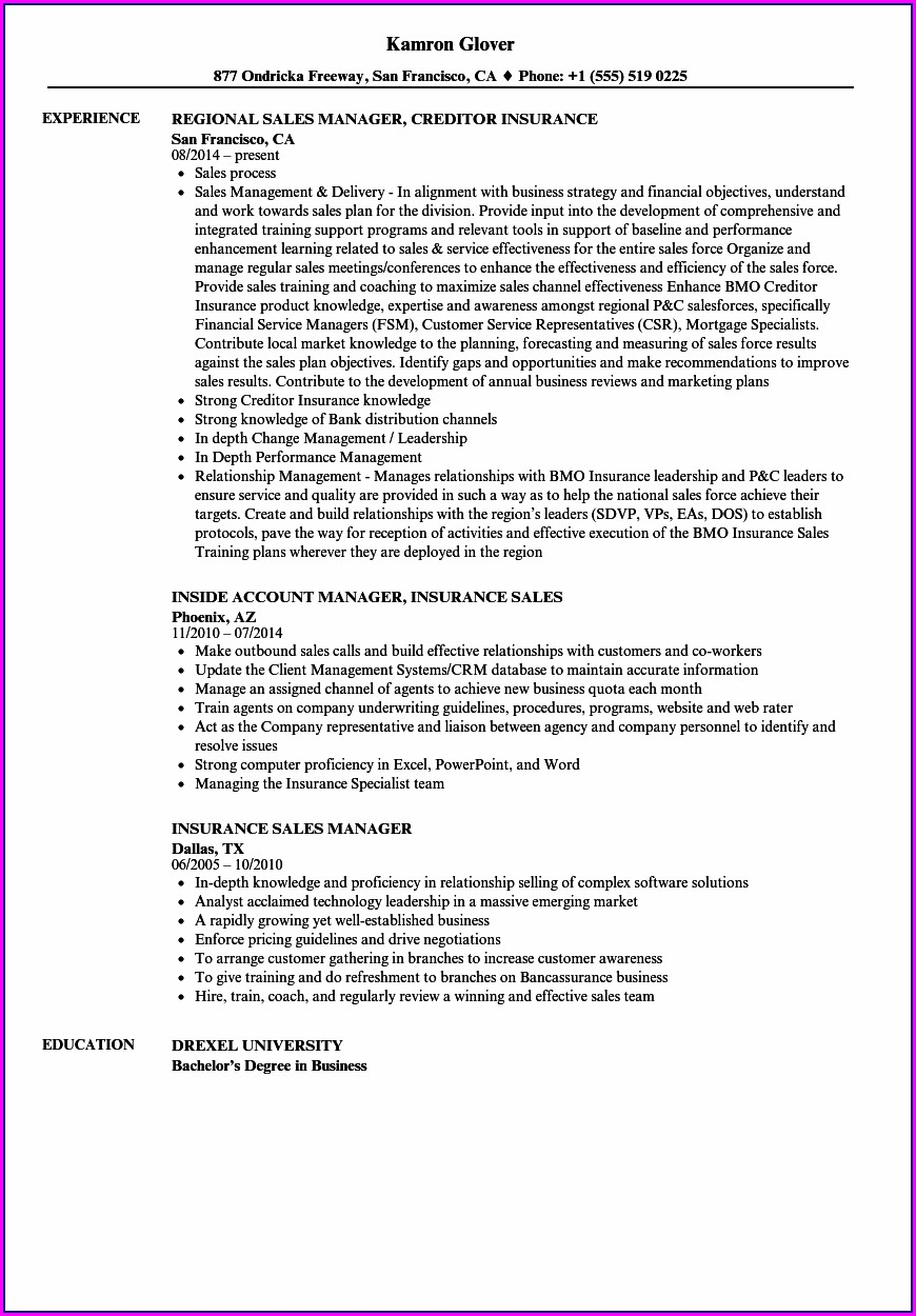 Resume For Sales Manager In Insurance Company