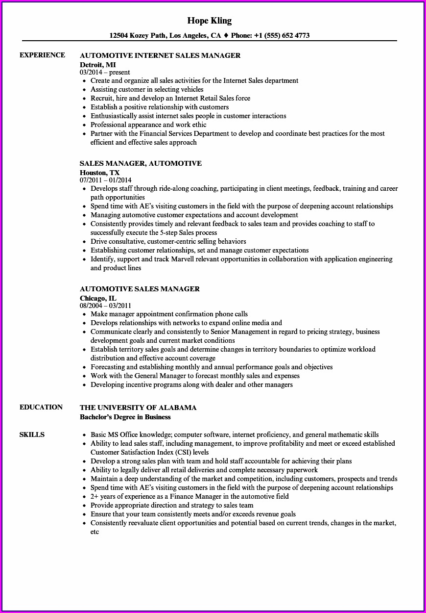 Resume Format For Sales Executive In Automobile