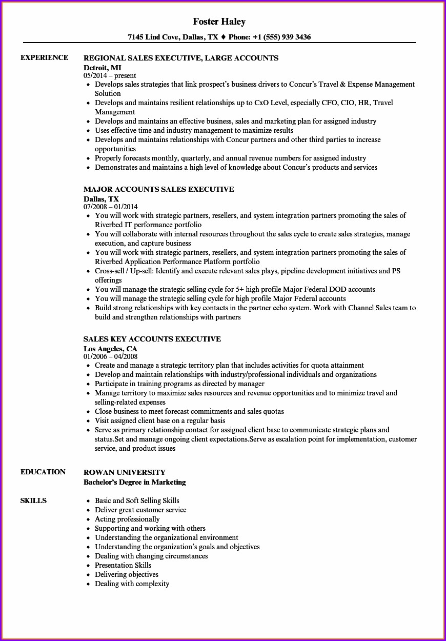 Resume Format For Senior Accounts Executive In India
