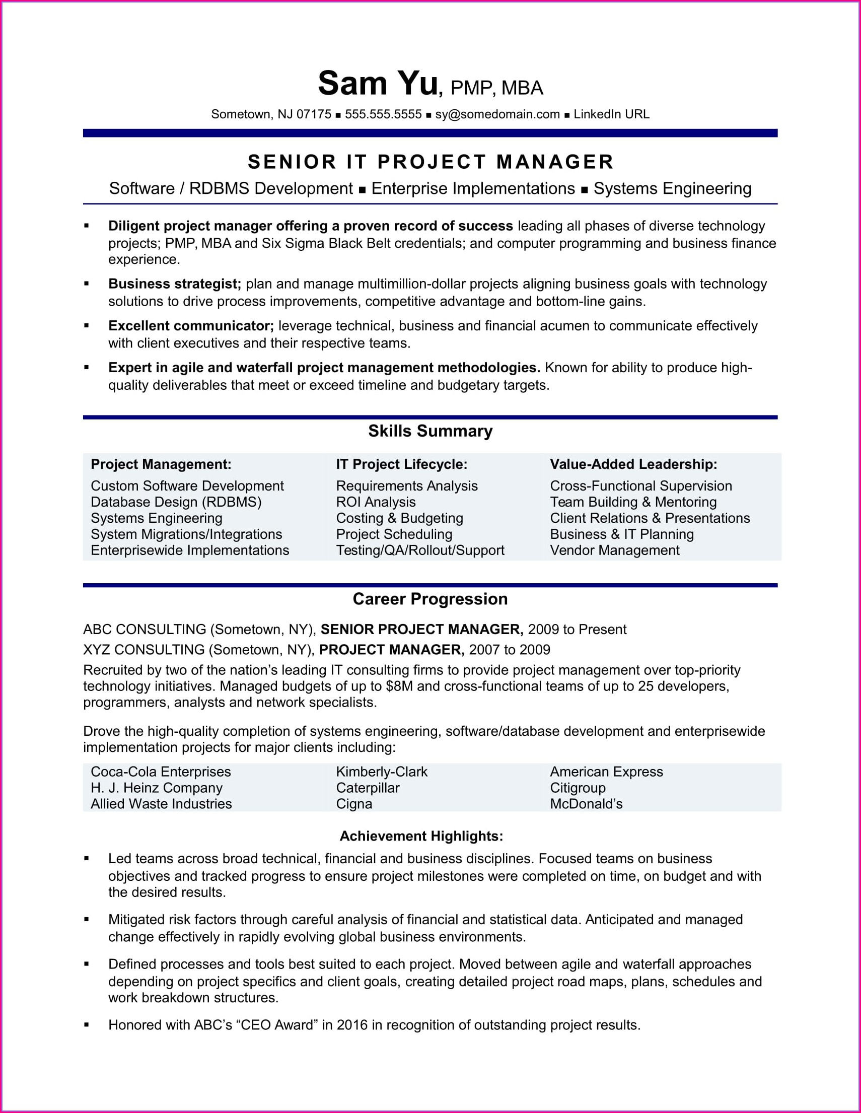 Resume Profile Examples For Project Management