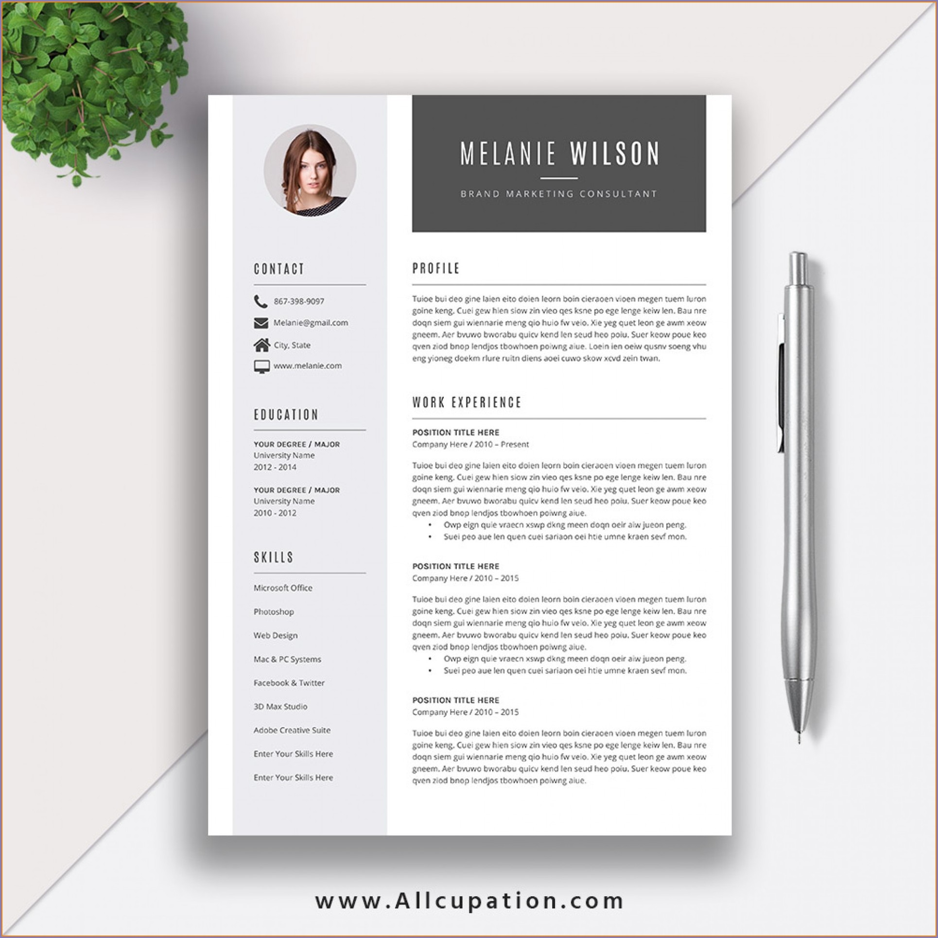 Resume Templates Word 2003 Free Downloads