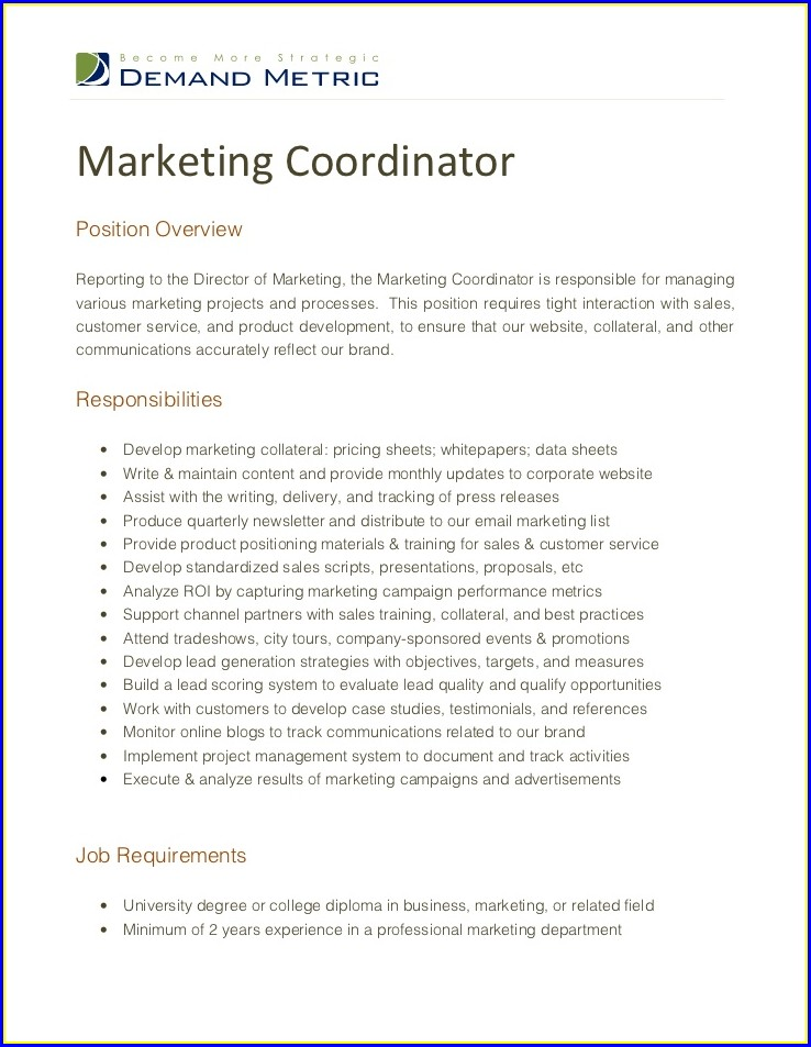 Sales And Marketing Manager Resume Sample Doc