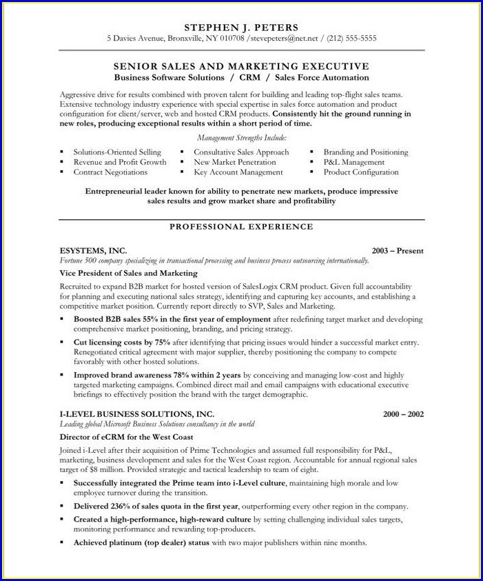 Sales Executive Resume Examples Free