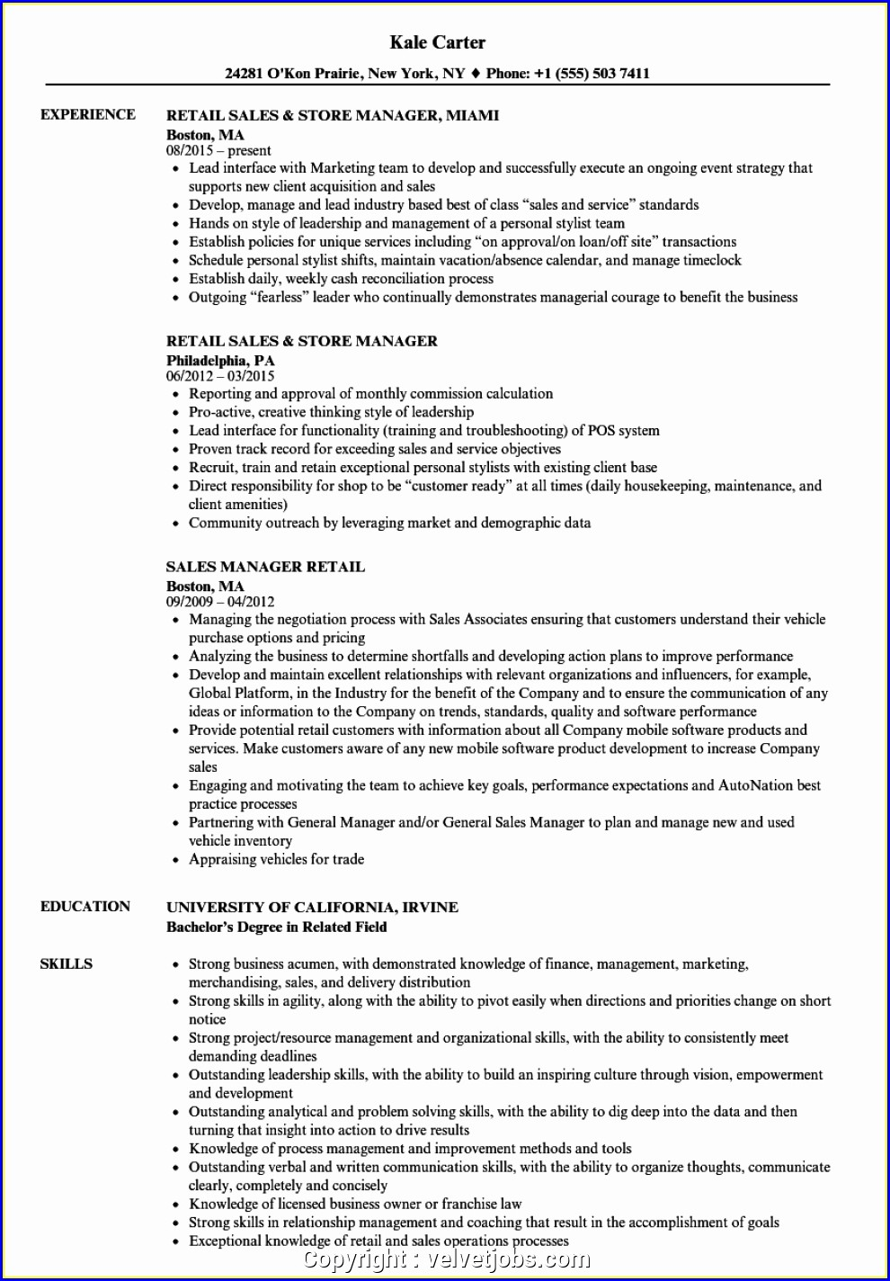Sales Manager Resumes Examples Free