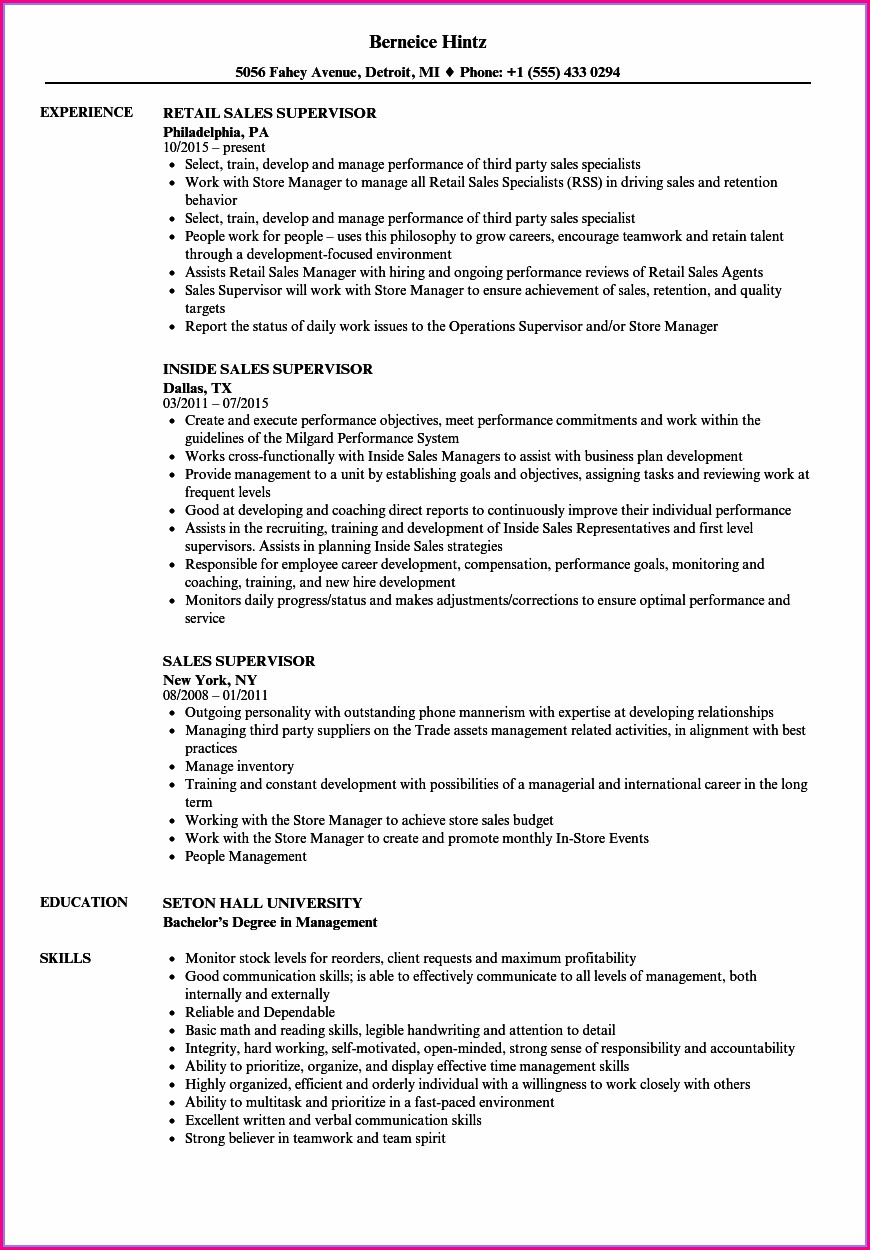 Sample Cv For Sales Manager Position