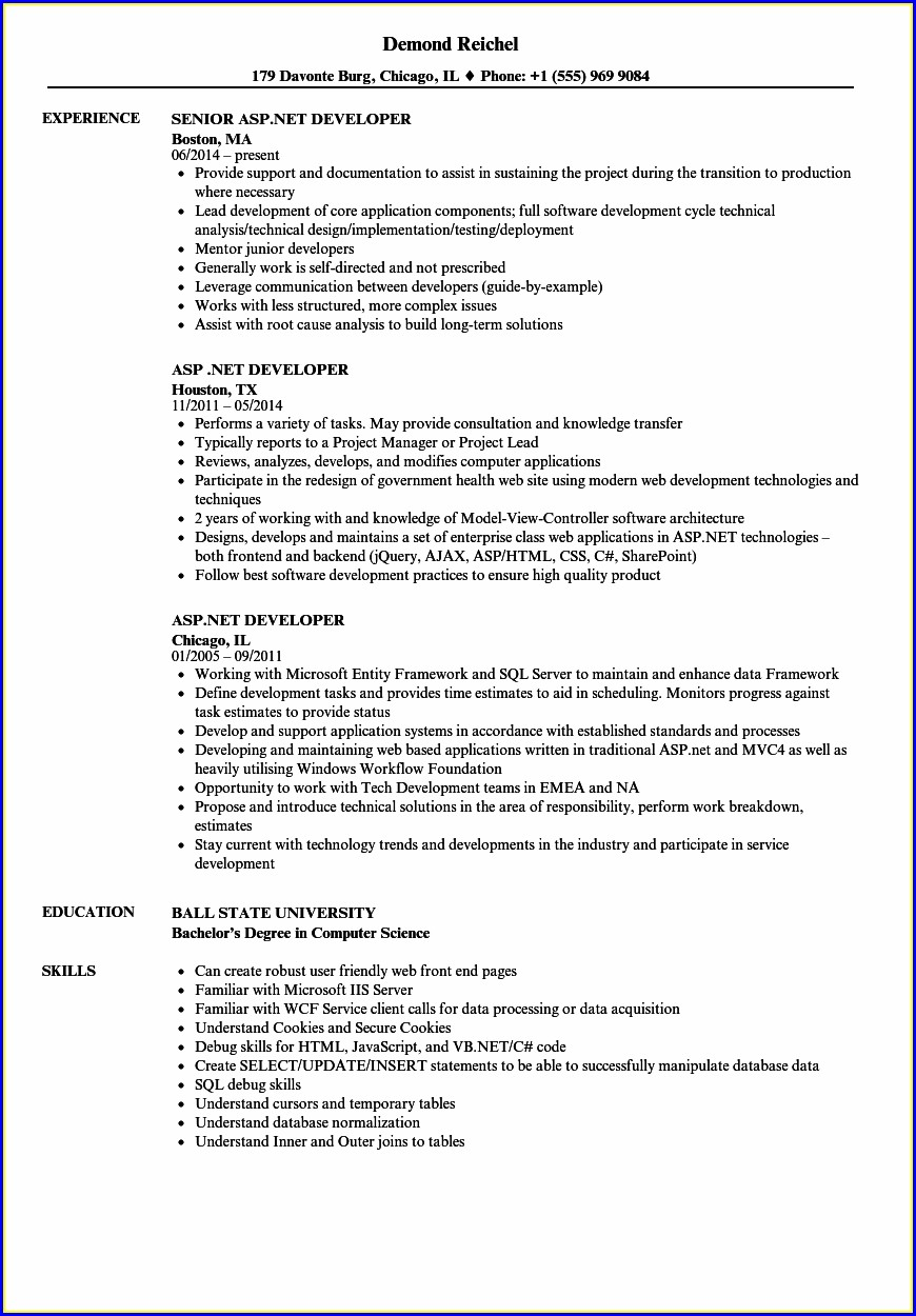 Sample Resume For Experienced Aspnet Developer