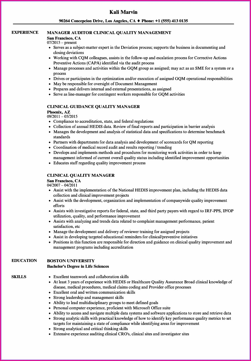 Sample Resume For Project Manager Position