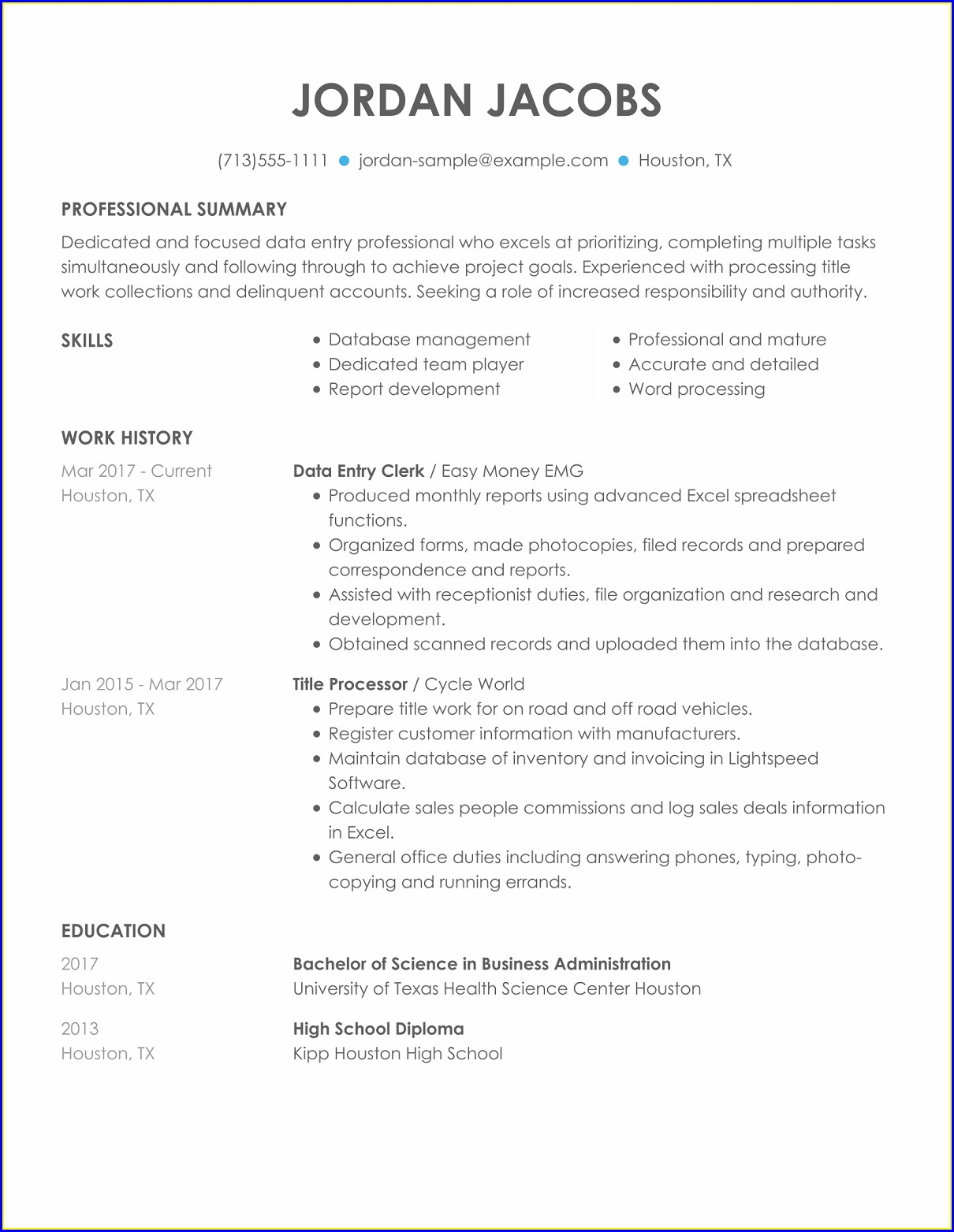 Sample Resume For Sales Director