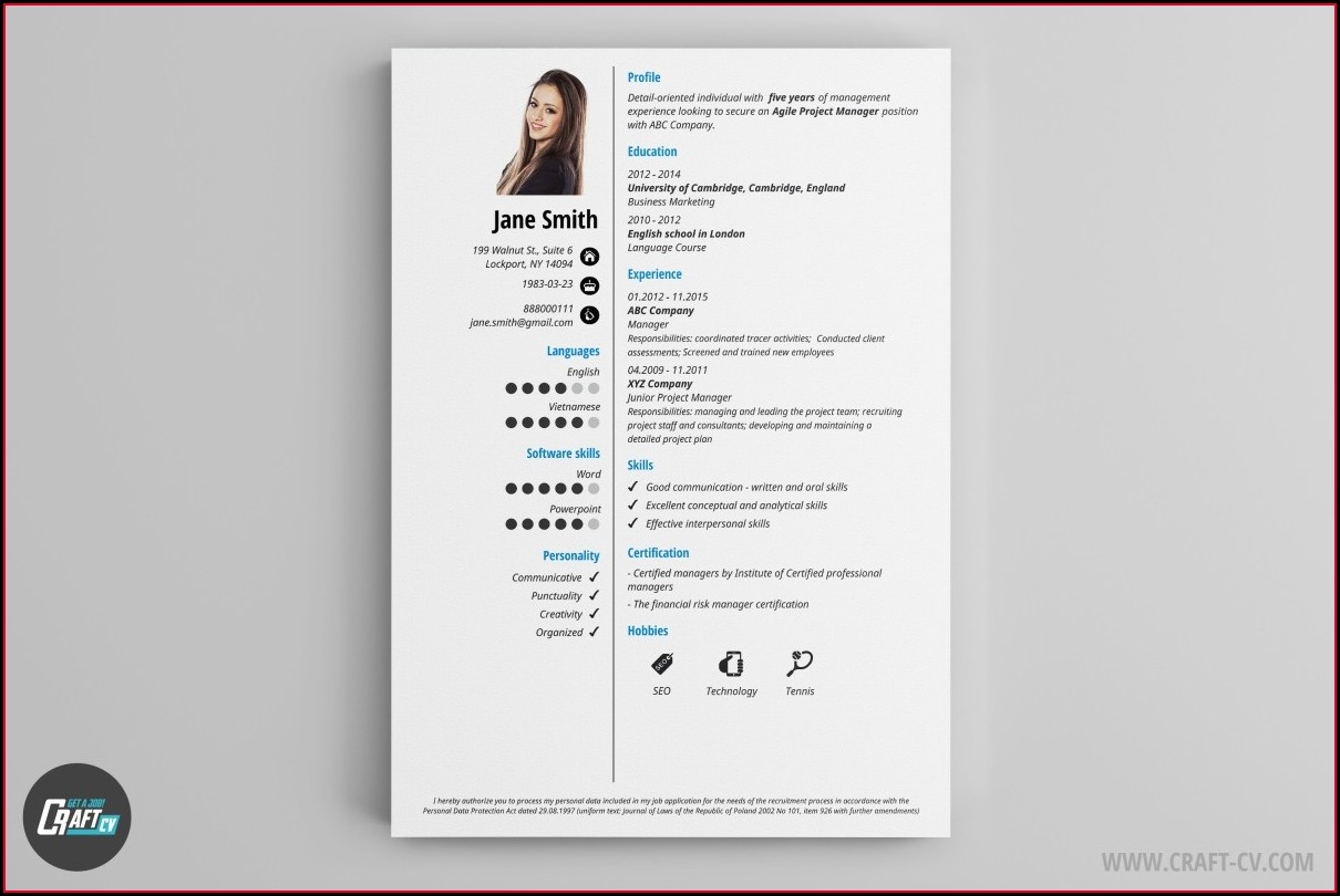 Sample Templates Of Professional Resume