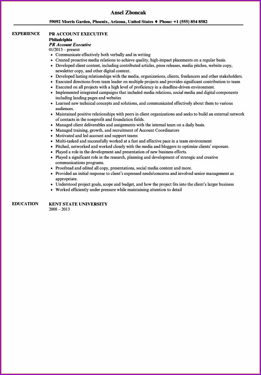 Senior Account Executive Resume Template