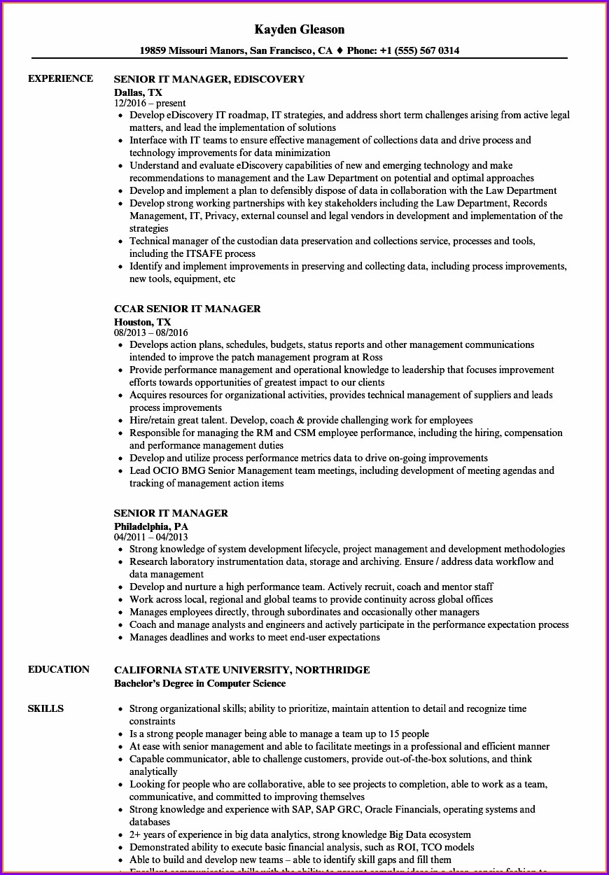 Senior Manager Resume Samples