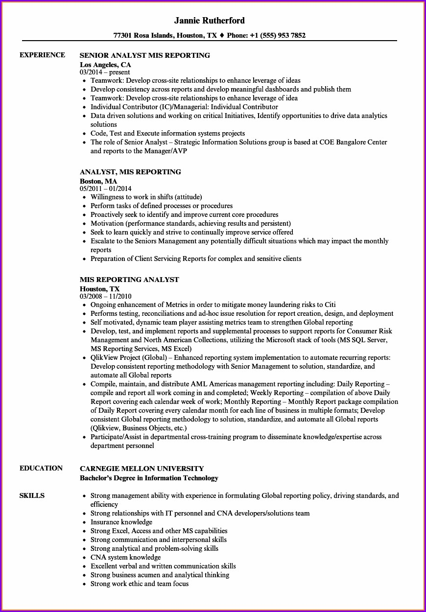 Senior Mis Executive Resume Format