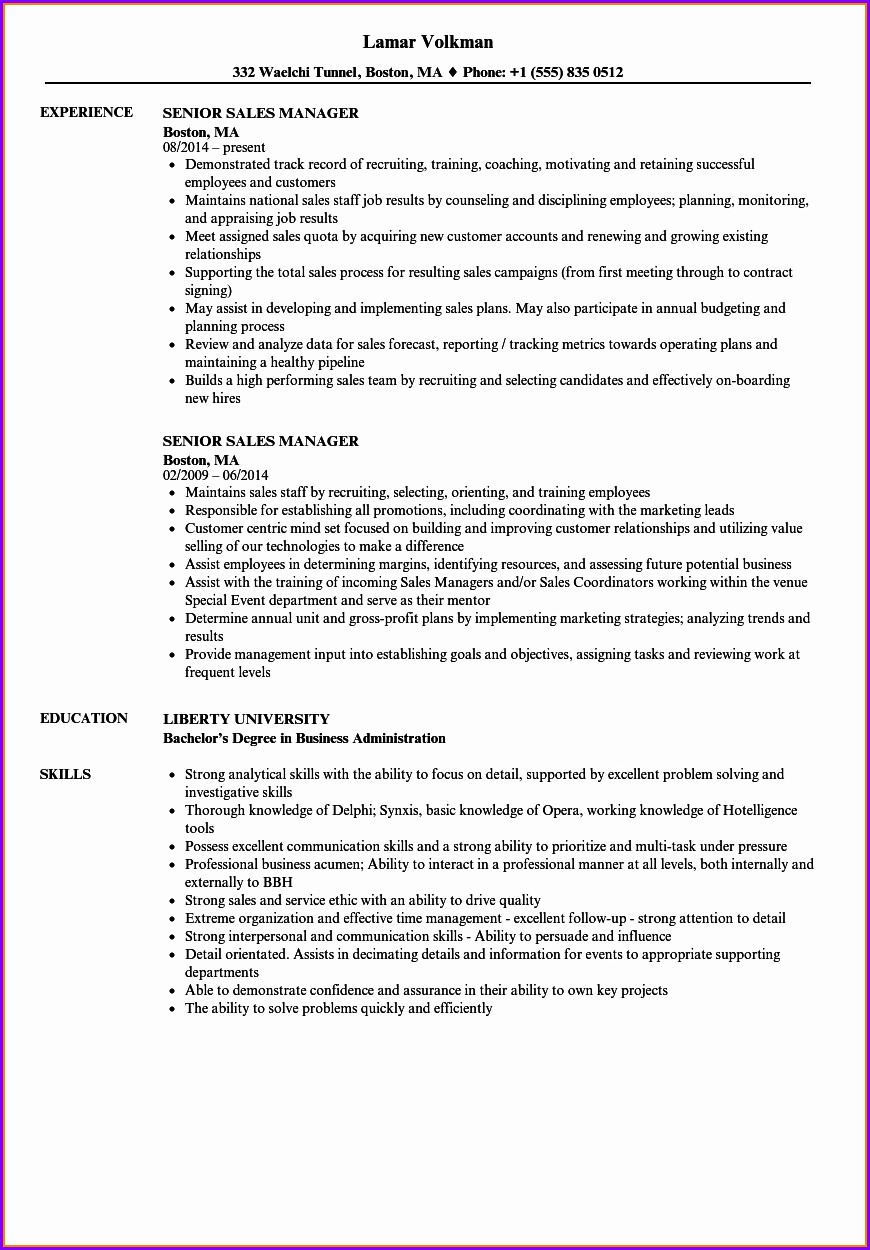 Senior Sales Manager Resume Sample