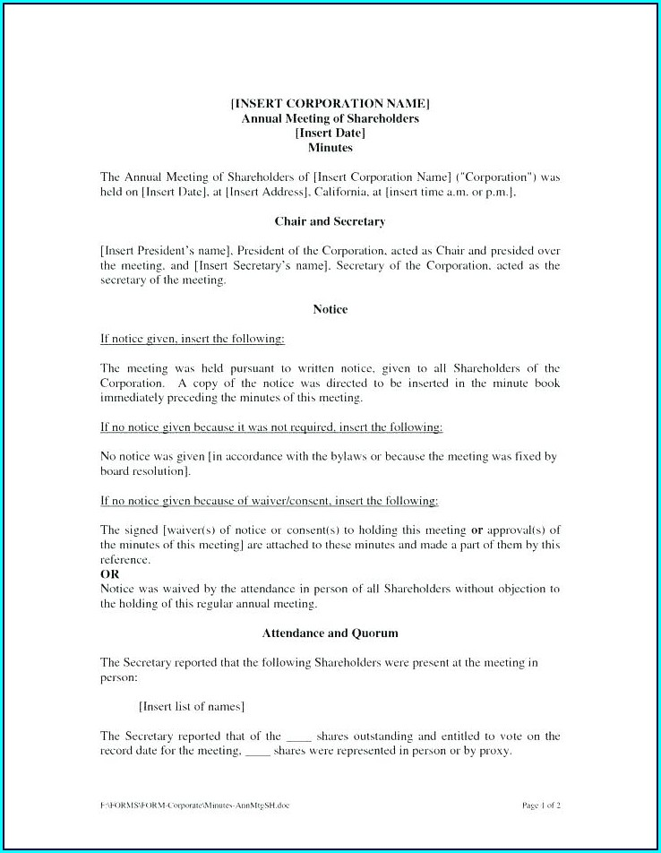 Sole Shareholder Meeting Minutes Template