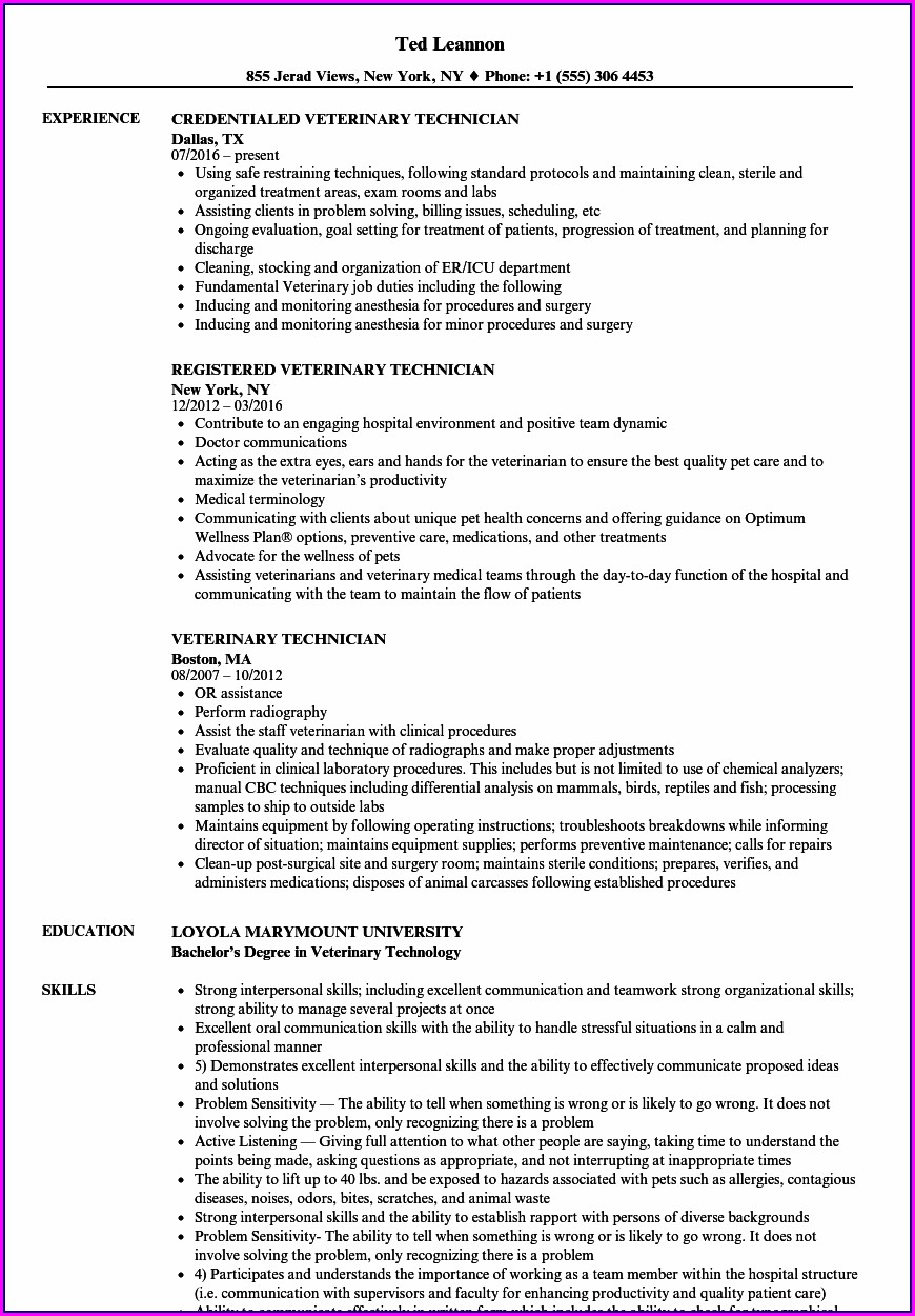 Veterinary Assistant Resume Summary Examples