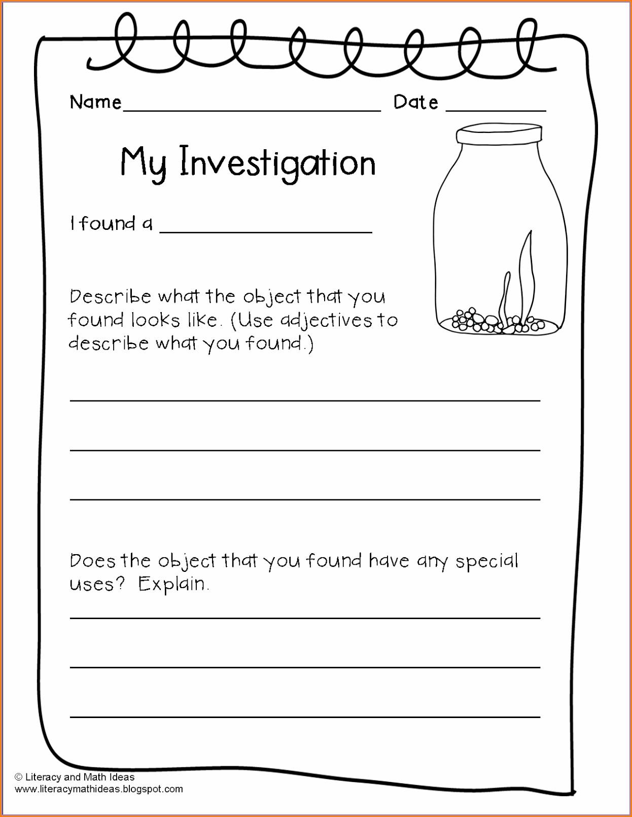 2nd Grade Fossil Worksheets