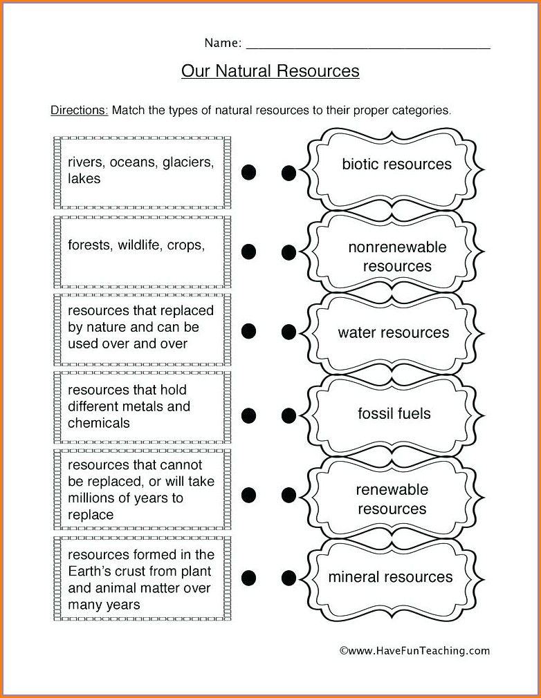 2nd Grade Free Fossil Worksheets