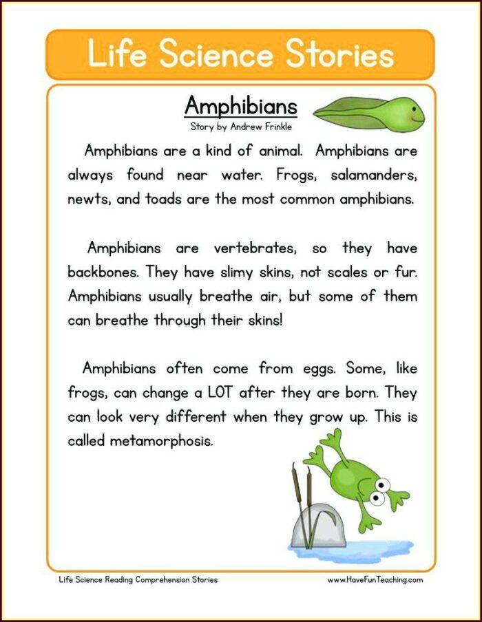 2nd Grade Science Worksheets On Plants