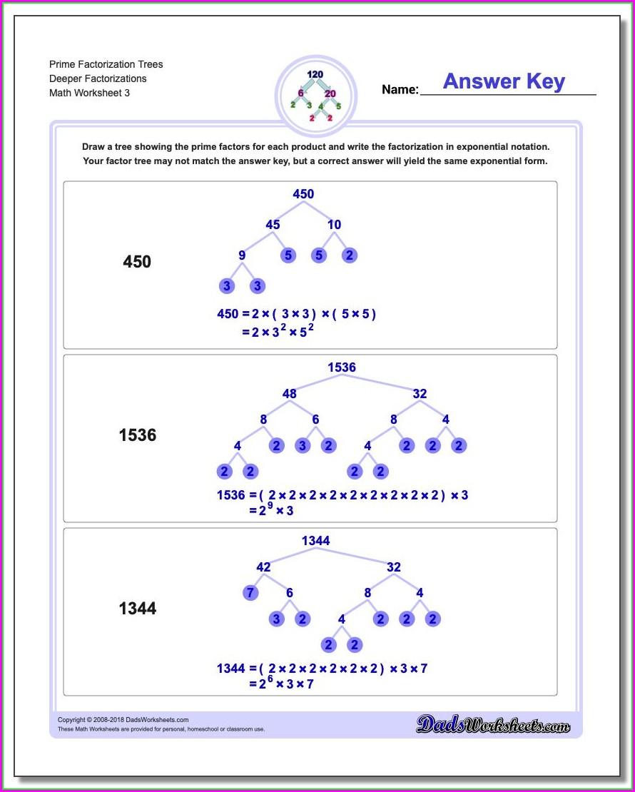 6th Grade Prime Numbers Worksheet
