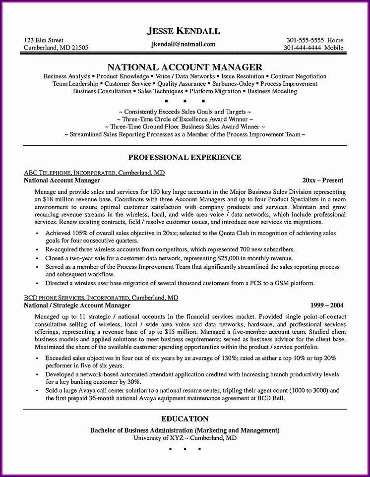 Best Sales Executive Resume Sample