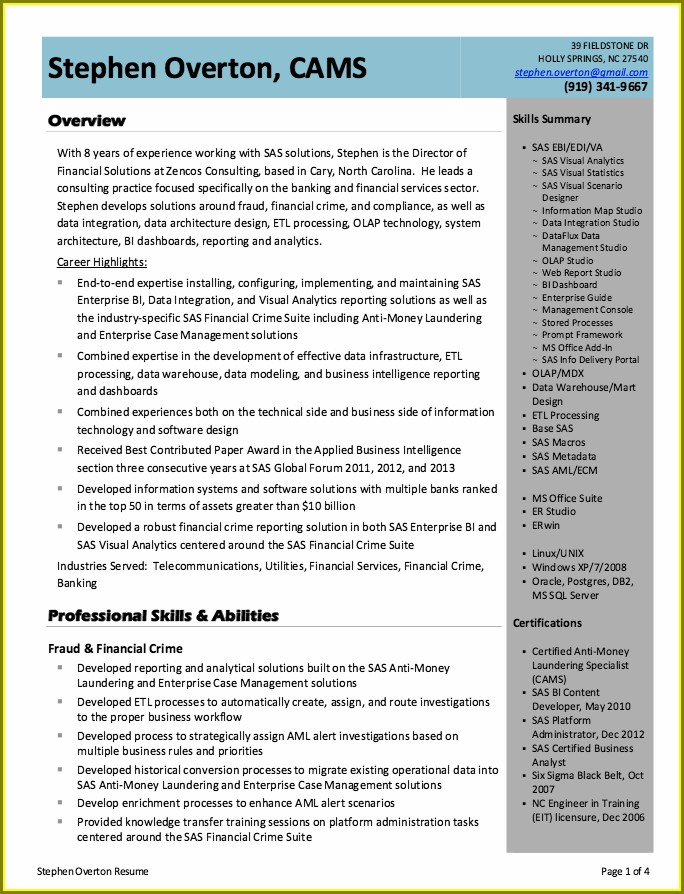 Business Intelligence Manager Resume Example