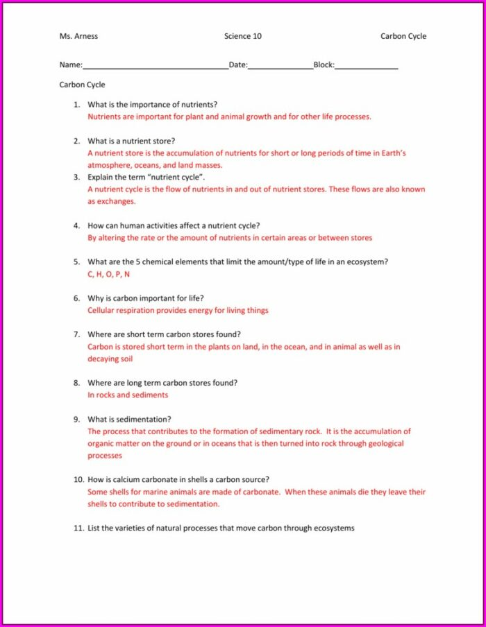 Carbon Cycle Worksheet With Answers