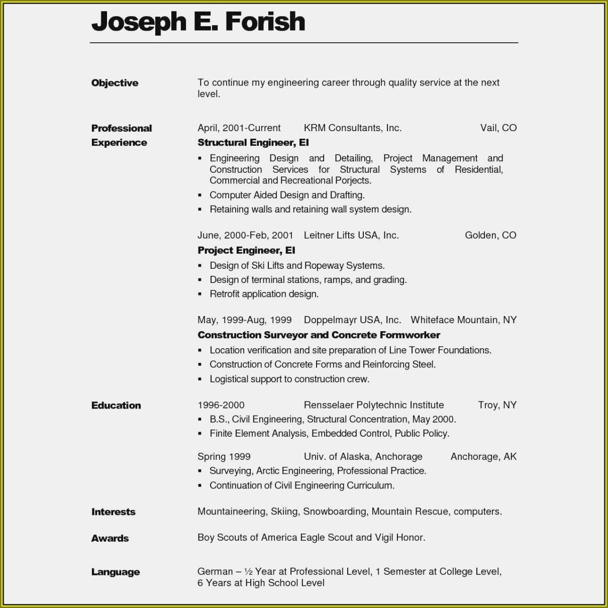 Curriculum Vitae Format Doc