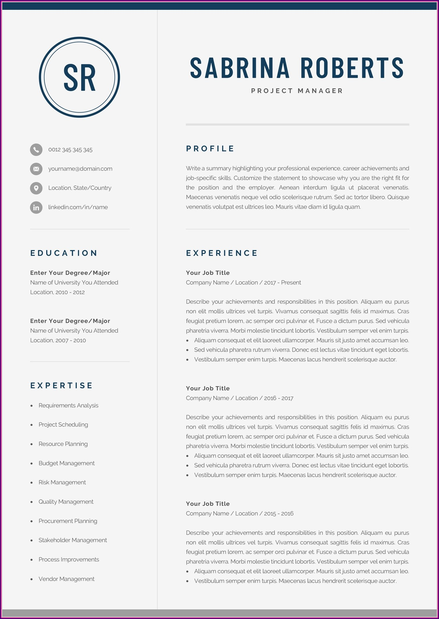 Cv Template For Executive Manager