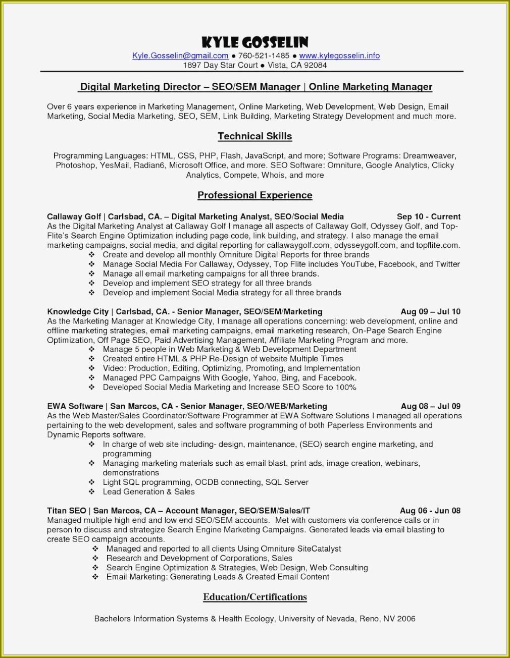 Digital Marketing Resume Sample Free Download