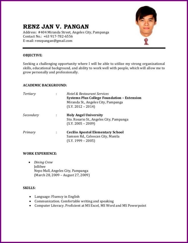 Example Of Job Resume Format