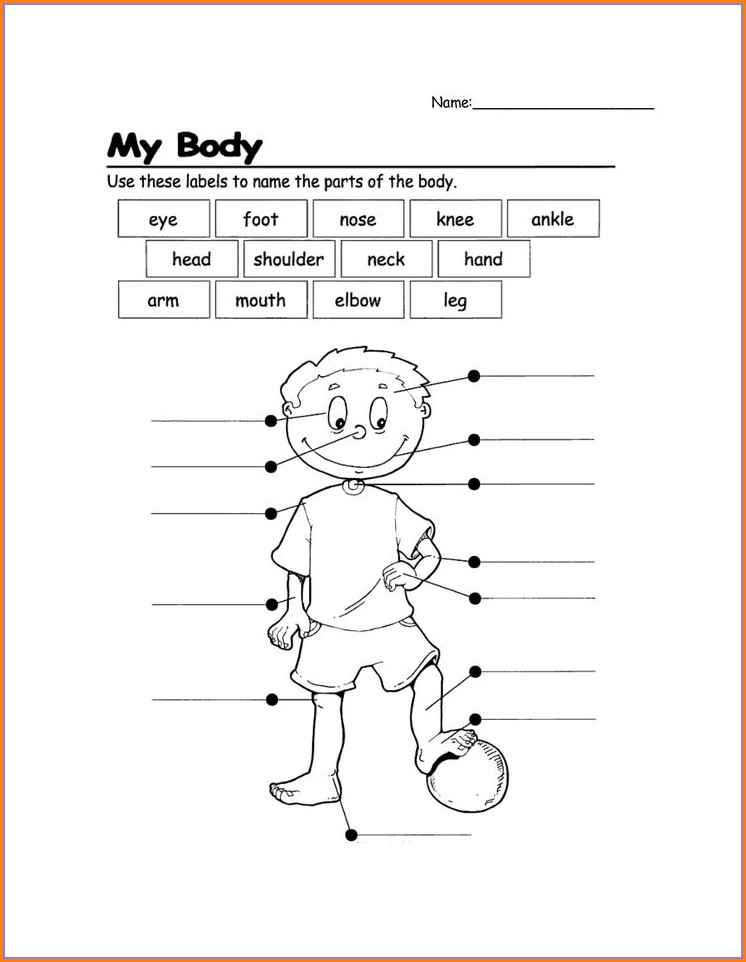 First Grade Grade 1 Health Worksheets