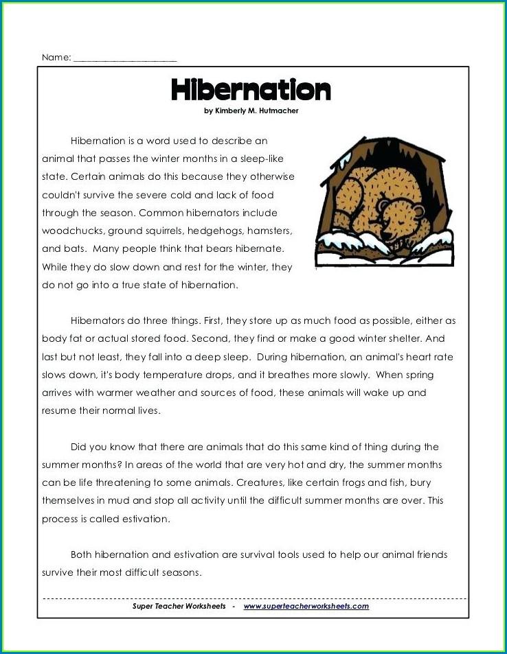 First Grade Hibernation Worksheets