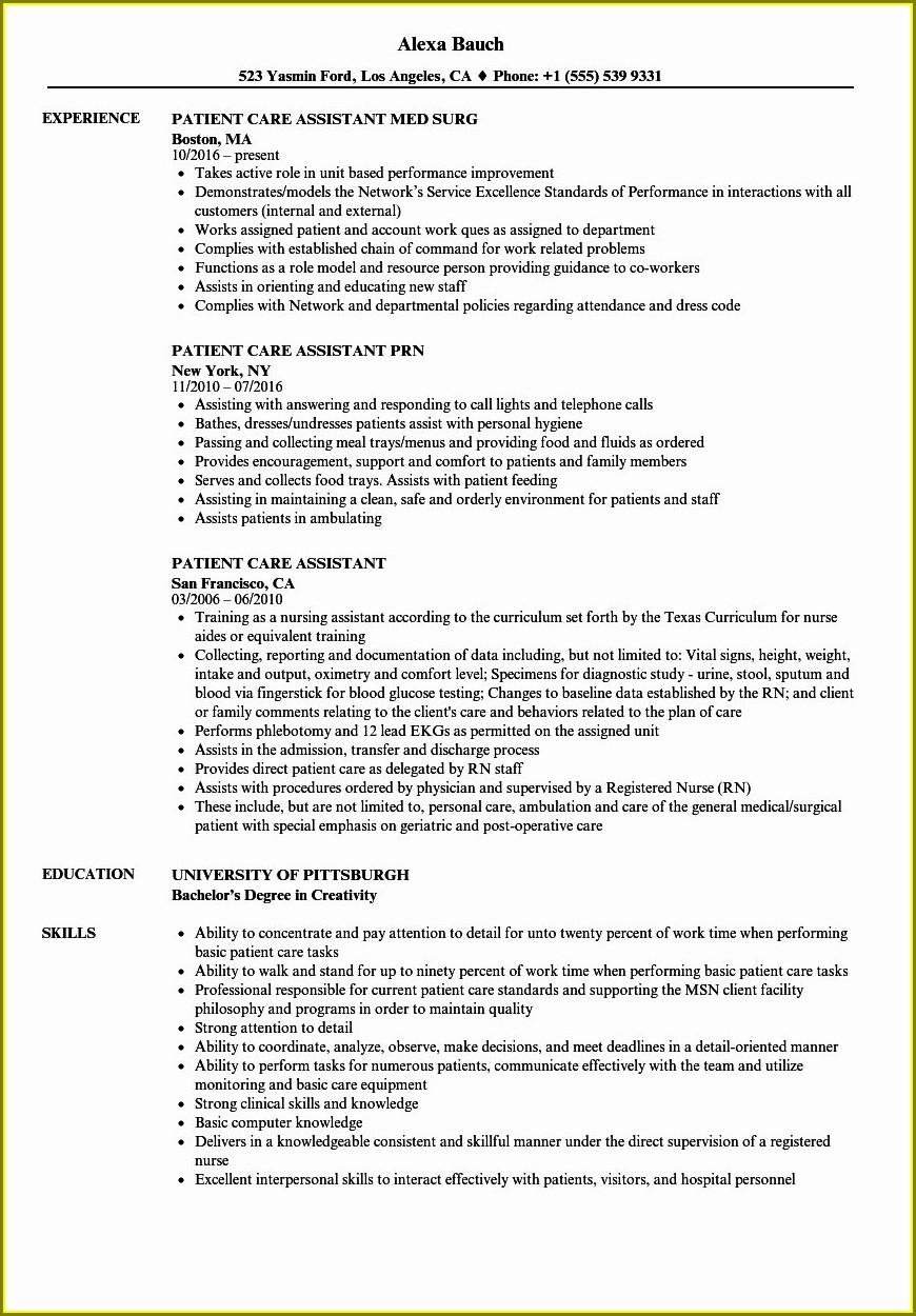 Free Resume Template Australia 2019