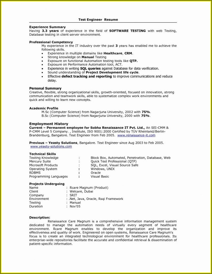 Free Resume Templates For It Professionals Download