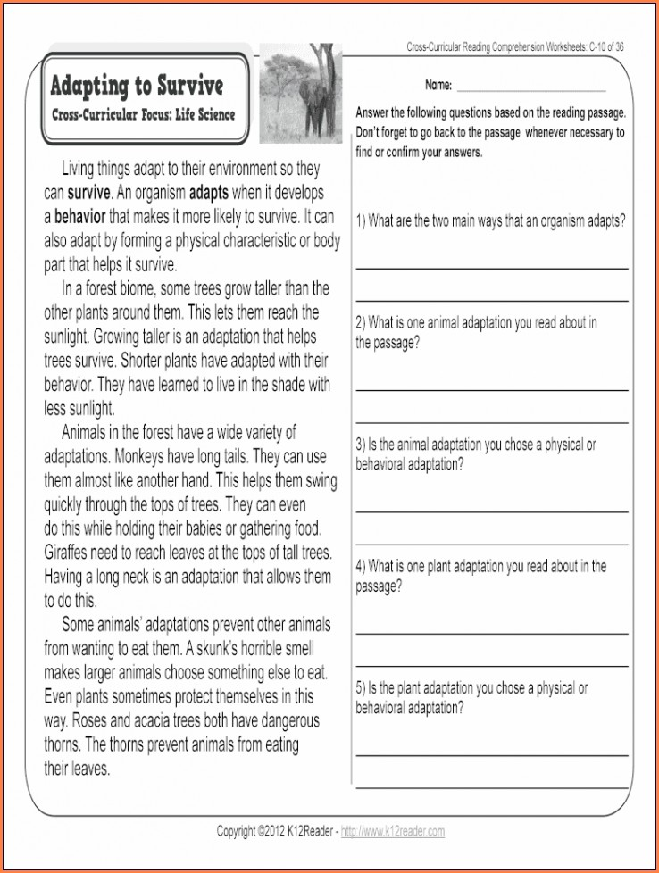 Grade 2 Reading Comprehension Worksheets For 2nd Grade