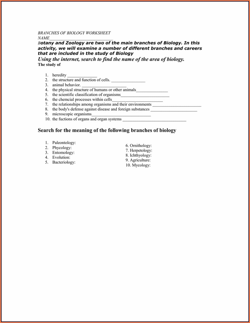 Grade 7 Branches Of Science Worksheet