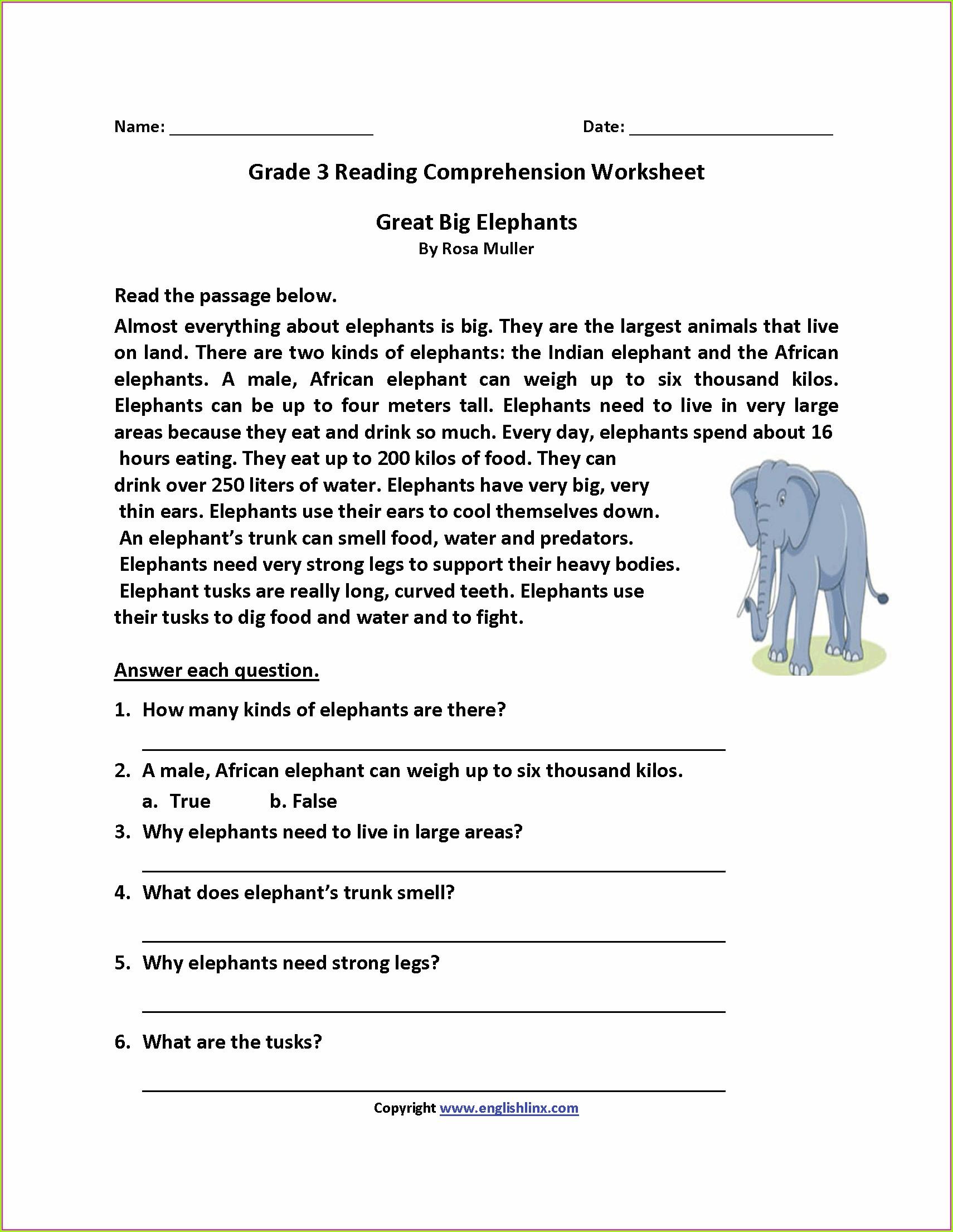 Mammals Worksheet Second Grade