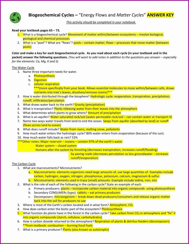 Nitrogen Cycle Worksheet Key