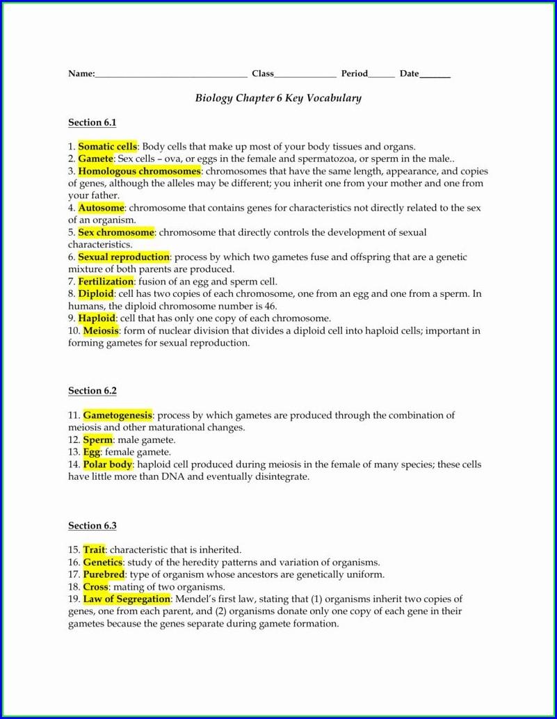 Persuasive Writing Vocabulary Worksheet