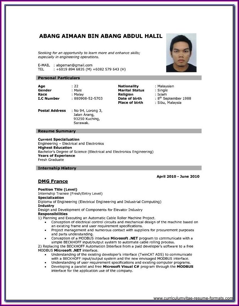 Professional Resume Resume Format Download Pdf