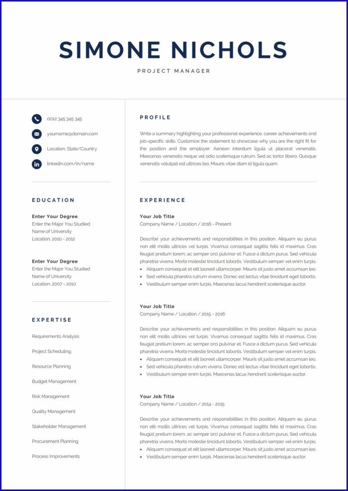 Professional Resume Template For Accountant