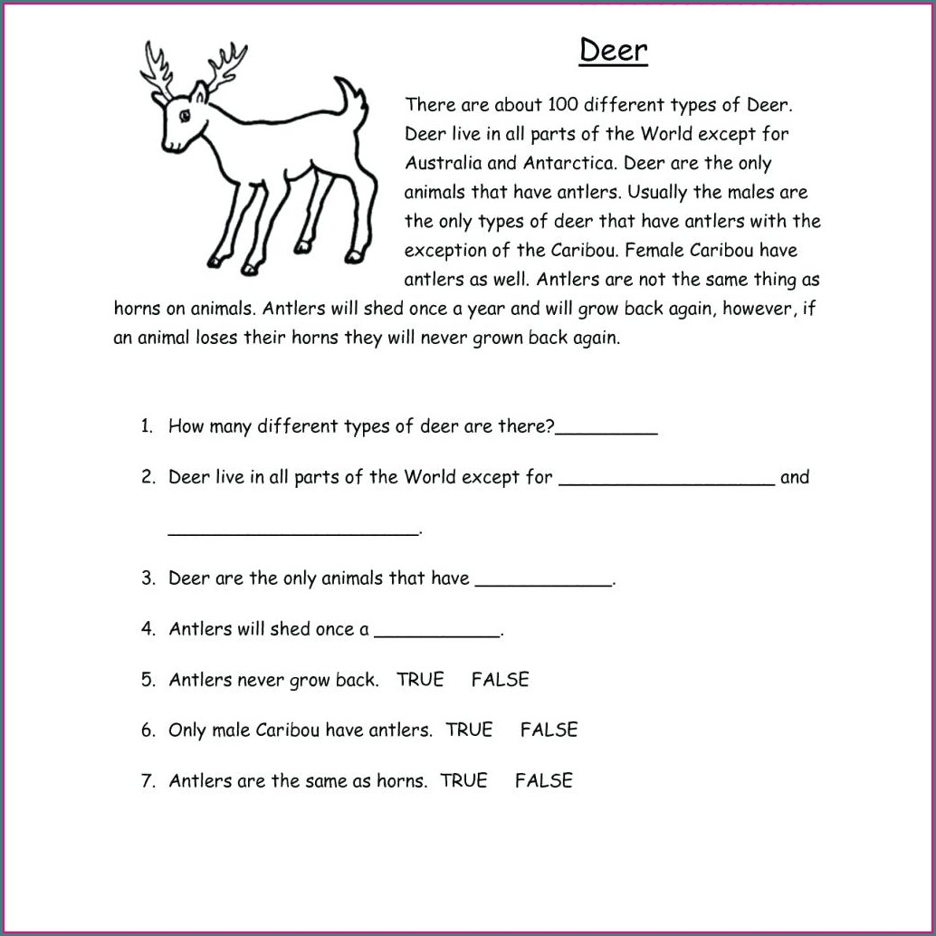 Reading Worksheet Maker Free
