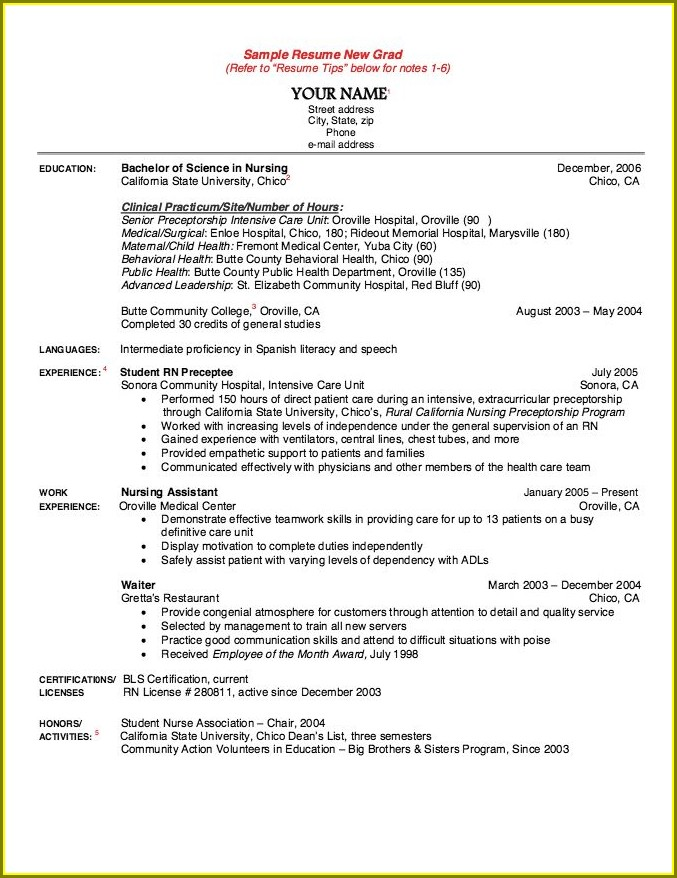 Registered Nurse Sample Resume New Graduate