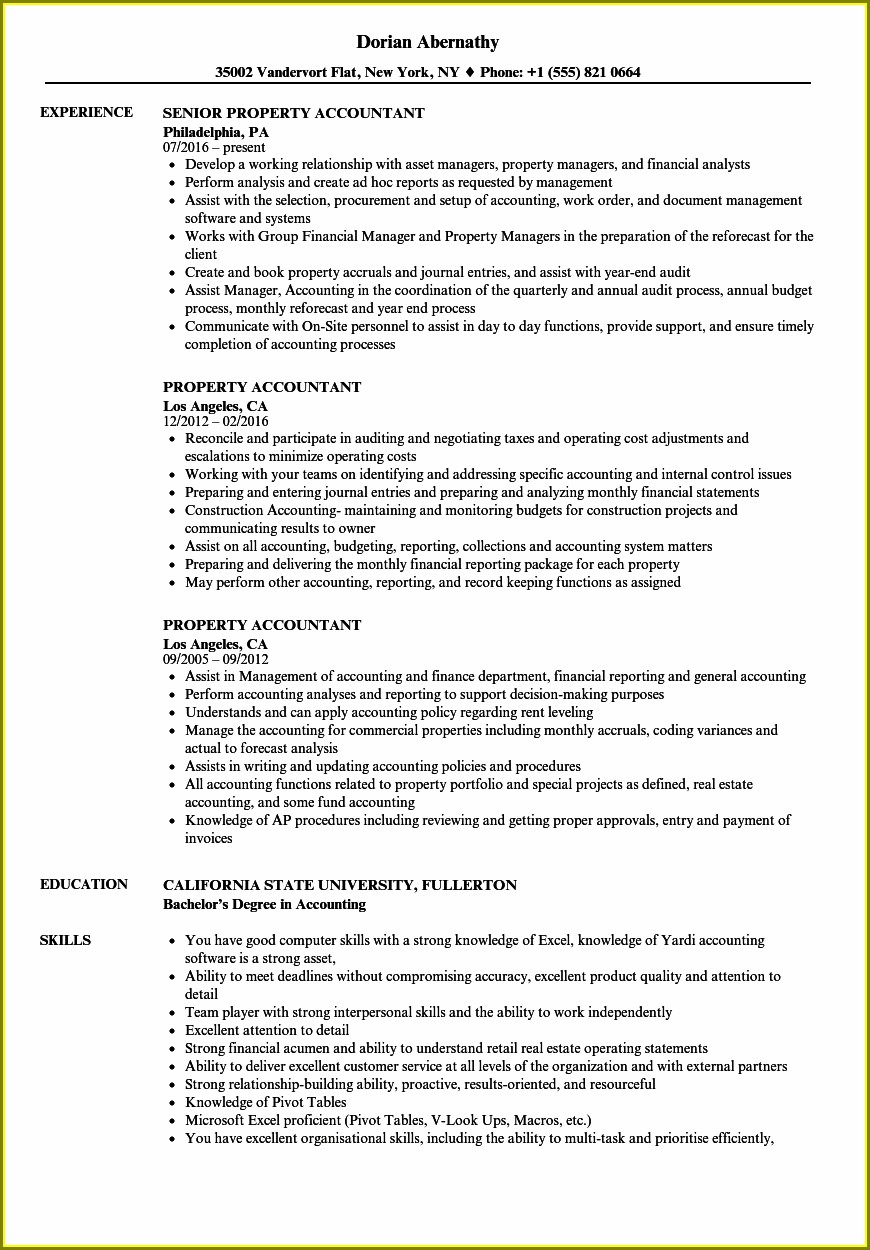 Resume Examples For Accountant Position