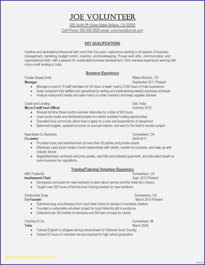 Resume For Director Of Nursing Position