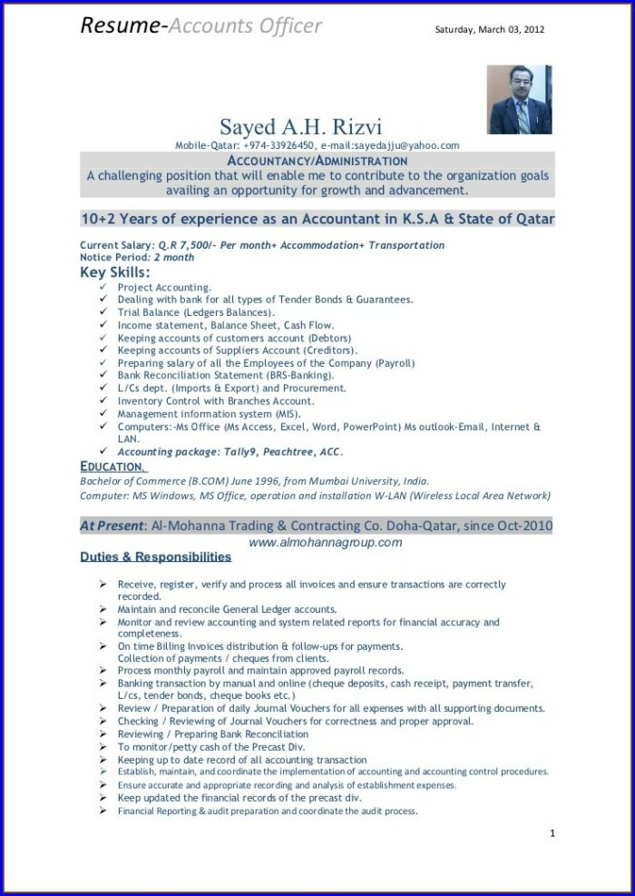 Resume Format For Accountant Job In India